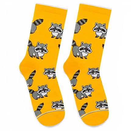 """Шкарпетки Дід Носкарь чоловічі 41-45 """"Єноти"""" жовті, фото 2"""