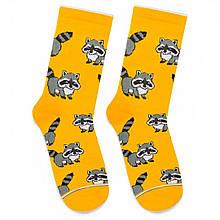 """Шкарпетки Дід Носкарь чоловічі 41-45 """"Єноти"""" жовті"""