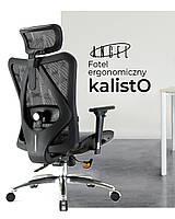 Офісне ергономічне крісло ANGEL kalistO, фото 1