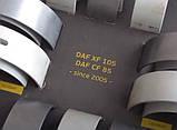 Комплект вкладышей DAF XF105 CF вкладыши корень шатун ДАФ ХФ105 ЦФ комплект STD, фото 2