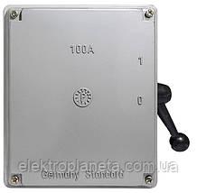 Рубильник 1-0 на 100А (QS5-100A)