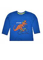 Реглан детский на мальчика Динозавр на велосипеде синий