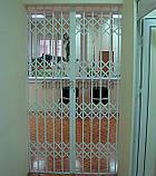 Раздвижные решетки на двери Шир.1500*Выс2550мм для дома, фото 3