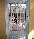 Раздвижные решетки на двери Шир.1500*Выс2550мм для дома, фото 5