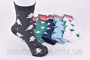 Носки женские МАХРА 3 шт в наборе разные цвета