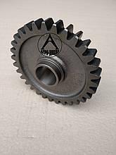 Шестерня промежуточная заднего хода Z-31 70-1701082