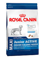 Корм Royal Canin (Роял Канин) MAXI JUNIOR ACTIVE для щенков крупных пород для активной жизни 15 кг