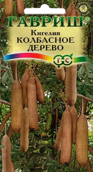 Семена Колбасное дерево (Кигелия)