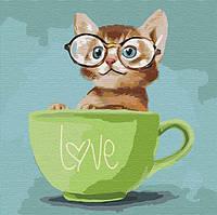 Картина по номерам Котик в чашке 40х40 см Идейка
