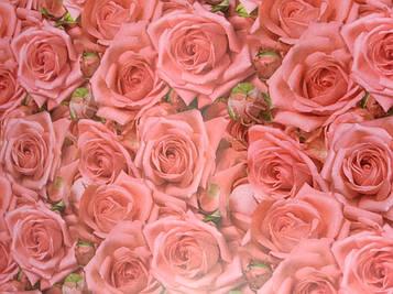 Упаковочная бумага размер 1 метр на 70 см с рисунком розы 1 шт