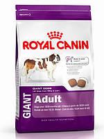 Корм Royal Canin (Роял Канин) GIANT ADULT  для собак гигантских пород старше 18-24 месяцев 15 кг
