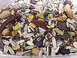 Корм для Жако, Амазона и других крупных попугаев , Ведро 1.5кг, фото 3