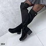 Ботфорты Деми черные 250, фото 3