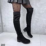 Ботфорты Деми черные 250, фото 5