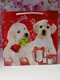Подарочные пакеты