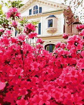 Картина по номерам 40х50 см Brushme Дом в цветах (GX 30186)