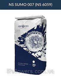 Насіння соняшника НС СУМО 007 / НС 6059 ОПТИМУМ під експрес або гранстар