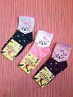 Носки детские хлопок стрейч Украина размер 14-16. От 6 пар по 7,50грн, фото 3