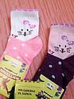 Носки детские хлопок стрейч Украина размер 14-16. От 6 пар по 7,50грн, фото 4