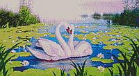 Схема вышивки бисером Лебеди на пруду (полная зашивка) dp-12059