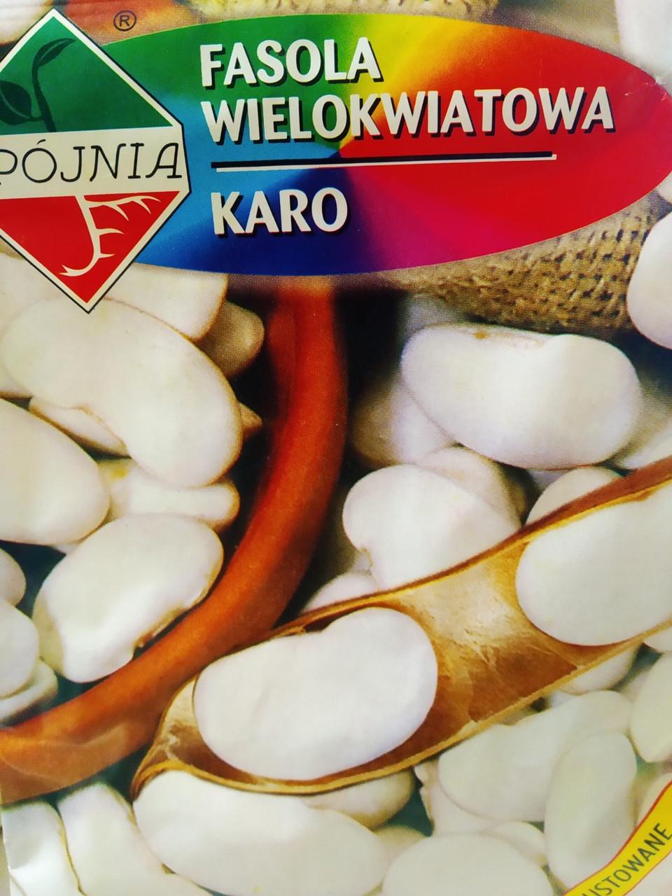 Насіння квасолі на сухе зерно сорт Каро кремова пізня для універсального застосування 50 грам насіння Польща