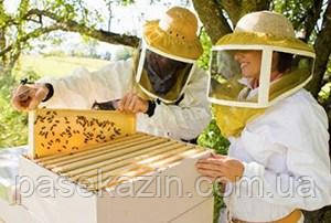 инвентарь пчеловода интернет магазин