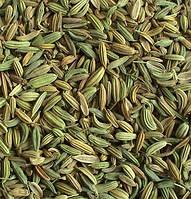 Фенхель плоды  Foeniculum vulgare (упаковка 50 гр.)