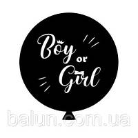 """Гендерна повітряна кулька(чорна) з надписом """"Boy or Girl"""" (білий) 1шт"""