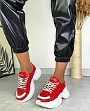 Женские кожаные кроссовки на платформе в разных цветах код 3424, фото 3