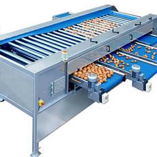 Оборудование для переработки овощей и фруктов, общее