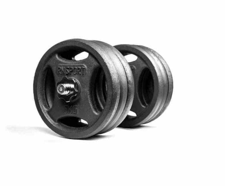 Гантель разборная RN-Sport 31 кг металлическая, чугунная
