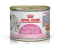 Royal Canin Mother Babycat Ultra Soft Mousse (Роял Канін Мазер Бебикет) вологий корм для вагітної кішки