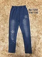 Леггинсы  под джинс для девочек Active Sports 116-146 р.р