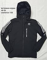 Куртка чоловіча демісезонна з капюшоном Adidas розміри норма 48-56,чорного кольору