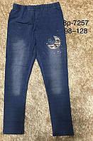Лосины с имитацией джинсы для девочек Glass Bear, 98-128 рр. Артикул: 8P-7257