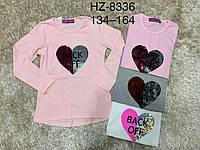 Реглан для девочек оптом, Glass Bear, 134-164 см,  № HZ-8336