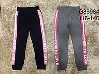Спортивные штаны для девочек оптом, Grace, 116-146 см,  № G86984