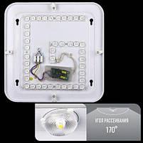 Светодиодный светильник Sneha, фото 5