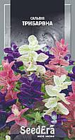Цветы для дачи Сальвия Трехцветная, 0.2 г, SeedEra. Семена однолетних цветов почтой