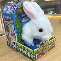 """М`яка іграшка """"Кролик""""  L0606"""