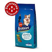 Brekkies Dog with Salmon 20 кг- корм для собак с лососем