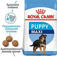 Royal Canin Maxi Puppy 4кг - корм для щенков крупных пород