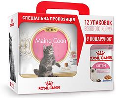Royal Canin Maine Coon Kitten 4кг+ 12 паучей для котят в подарок