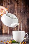 Натуральный чай Облепиха-Маракуйя, саше 40 г, фото 2