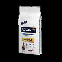 Advance Dog Sensitive 12кг гіпоалергенний корм для собак з ягням