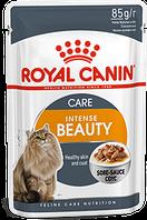 Royal Canin Intense Beauty в соусі 85г*12шт-паучи для підтримки краси вовни кішок