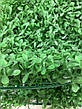 Искусственный коврик Хедж - трава . Коврик панно для декора ( 40 * 60 ), фото 3