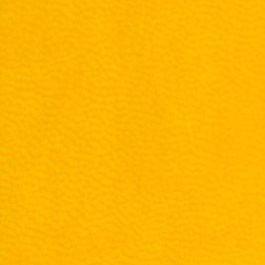 желтый ежедневник Vivella