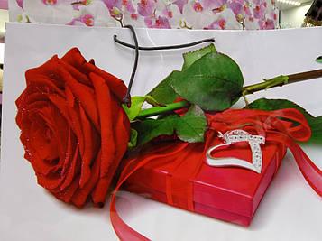 Подарунковий Пакет Ггант з малюнком  46 на 33 см 1 шт