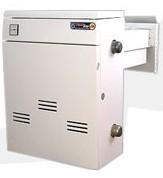 Газовый котел ТермоБар двухконтурный бездымоходный КС-ГВС-12,5ДS